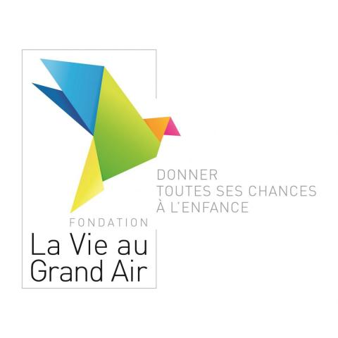 Logo de La Vie Au Grand Air